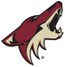 2016 Arizona Coyotes Salary Cap