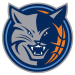 Charlotte Bobcats Contracts