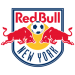 New York Red Bulls 2017 Salary Cap