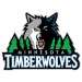 Minnesota Timberwolves 2013 Salary Cap